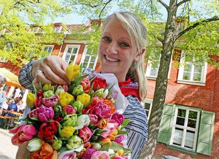 Dieses Jahr nicht: Tulpenfest im Holländischen Viertel.